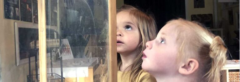 Children observing something behind a glass